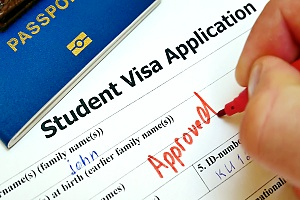zoomed in view of a student visa application